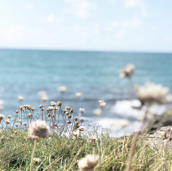 Image of the sea thrust on the cliff path with the sea in the background, highlighting the benefits of getting outside.